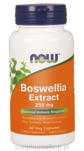 NOW Foods Boswellia Extract 250 mg COMPLEX – 60 kaps
