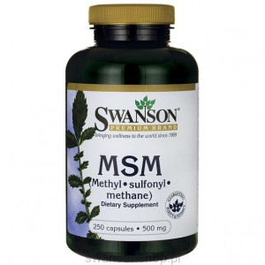 MSM 500mg 250kaps - suplement diety